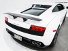 Gallardo LP560-2 50th Anniversary